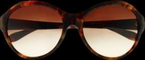 Signature Pony Sunglasses