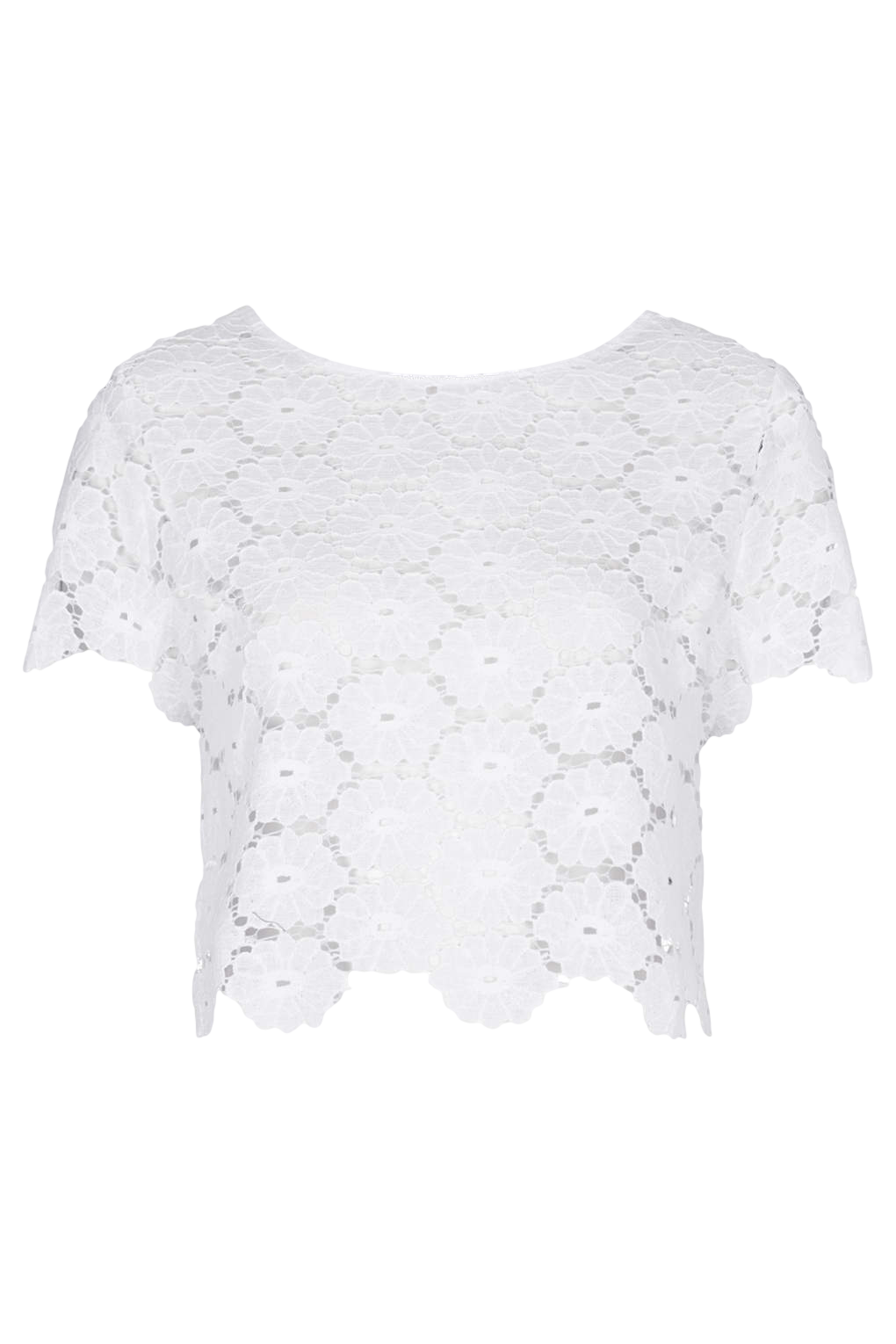 Petite Exclusive Lace Tee
