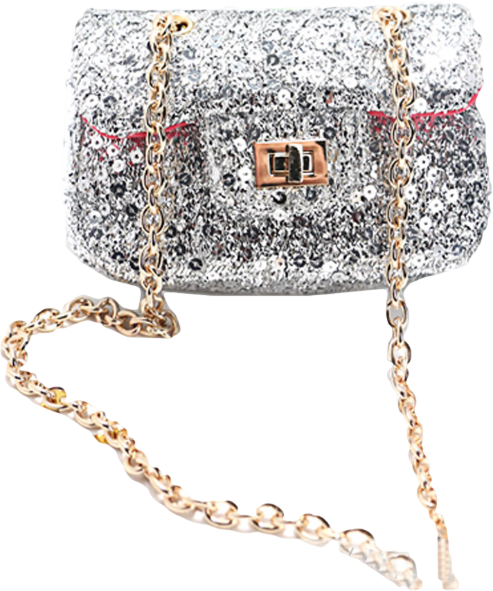 Silver Sequined Mini Across Body Bag with Chain Strap